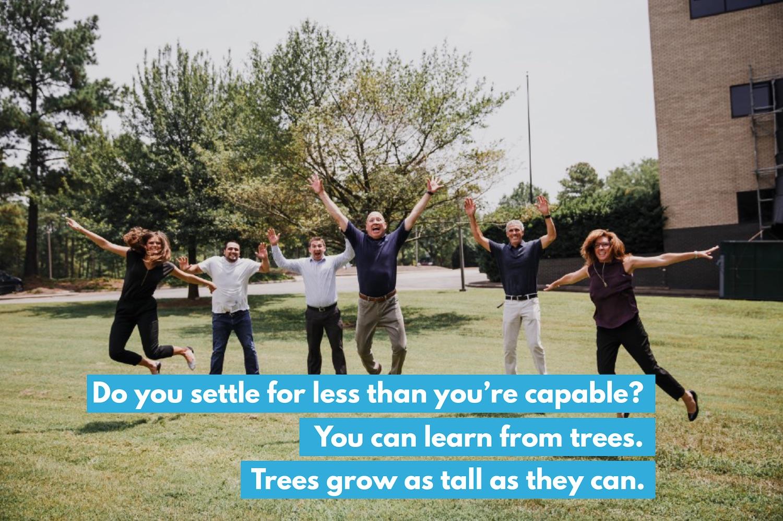 How Tall Will a Tree Grow?